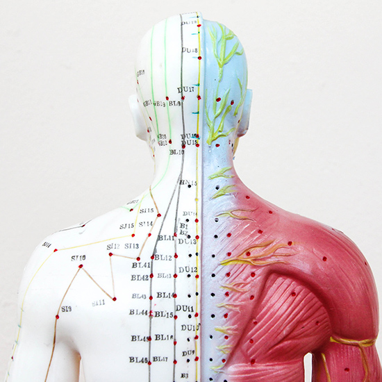 Points d'acupuncture et méridiens